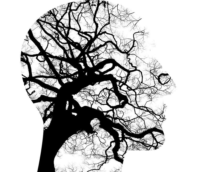neurodanza